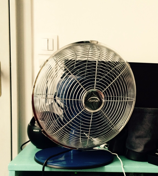 The Fan In Question
