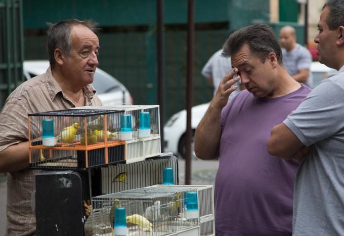Chatting at the Sunday Bird market