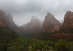 Patriarchs After the Rain, Zion