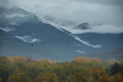 Taos, Storm Coming In
