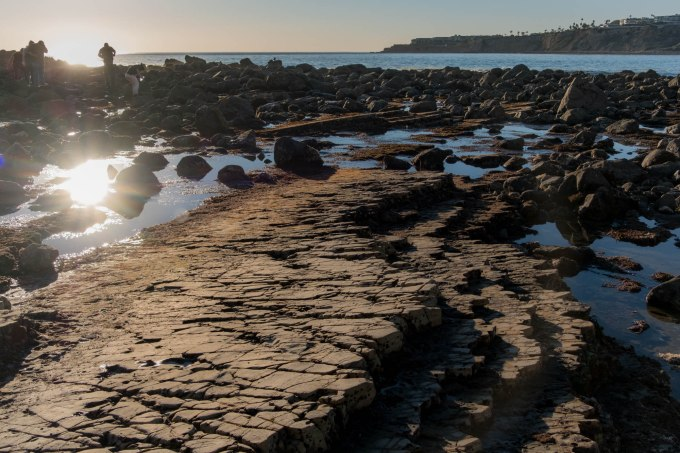 Abalone State Beach Park
