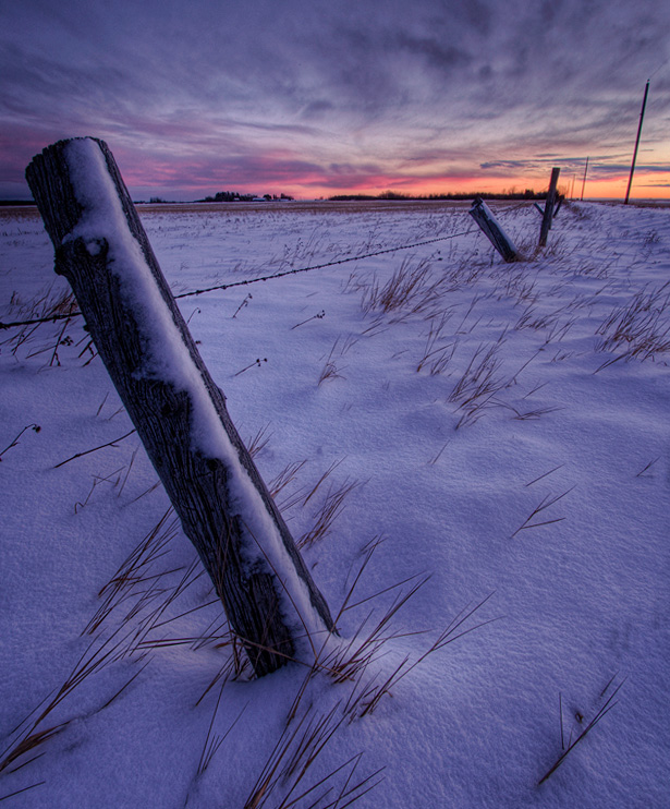 landscape, prairie, winter, dan jurak, alberta, snow, cold, fencepost, farm, rural, fence post,