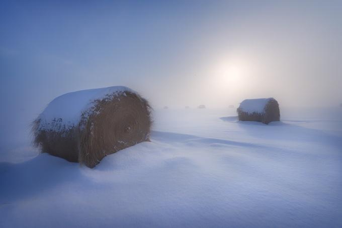 snow, winter, sleep, ethereal, moody, explorealberta, landscape, Alberta, prairie, cold, foggy, misty, farm, rural, hay bales,